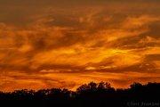 Jupiter sky at sunset